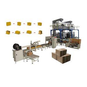 Bag Cartoning System